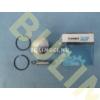 Dugattyú szett 40mm Farmertec25514